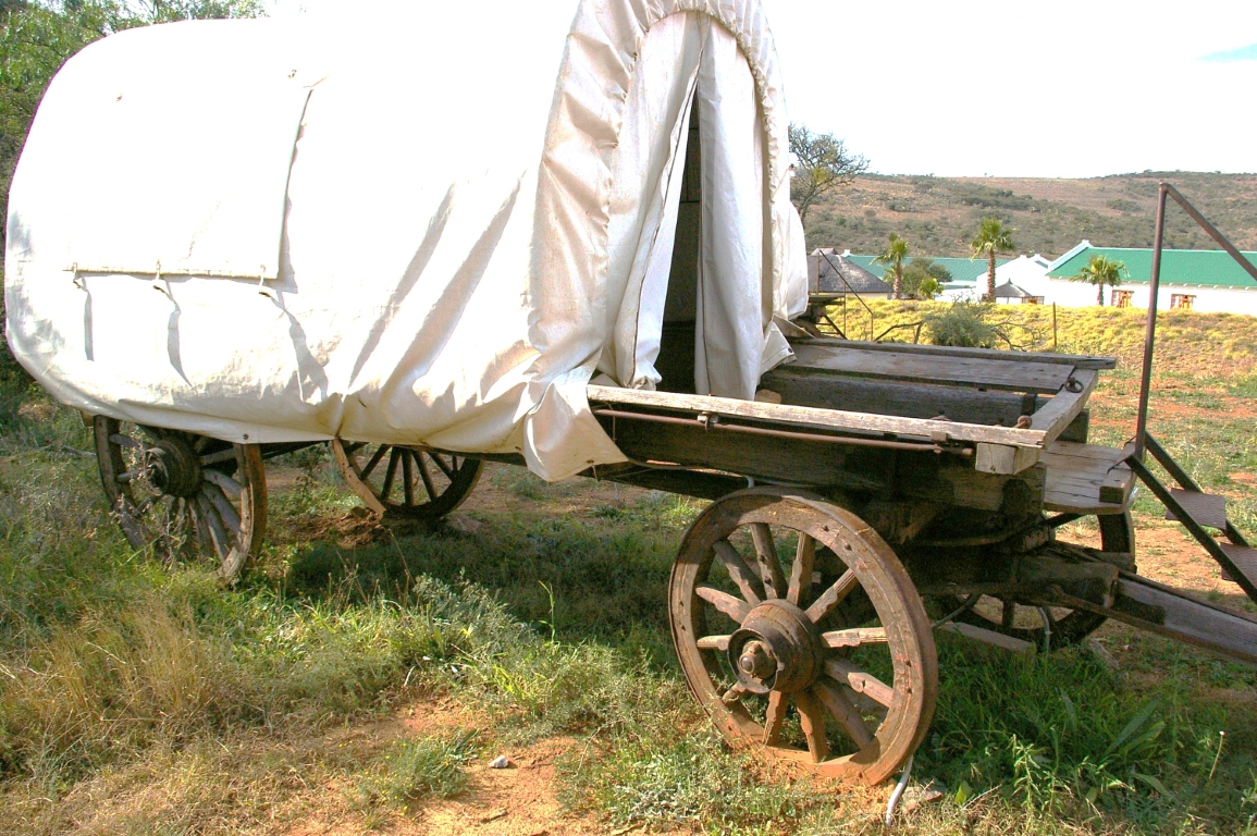 C.A. Nel-versameling, Wilmotskloof-kamp, Clarence